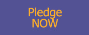 Pledge NOW!
