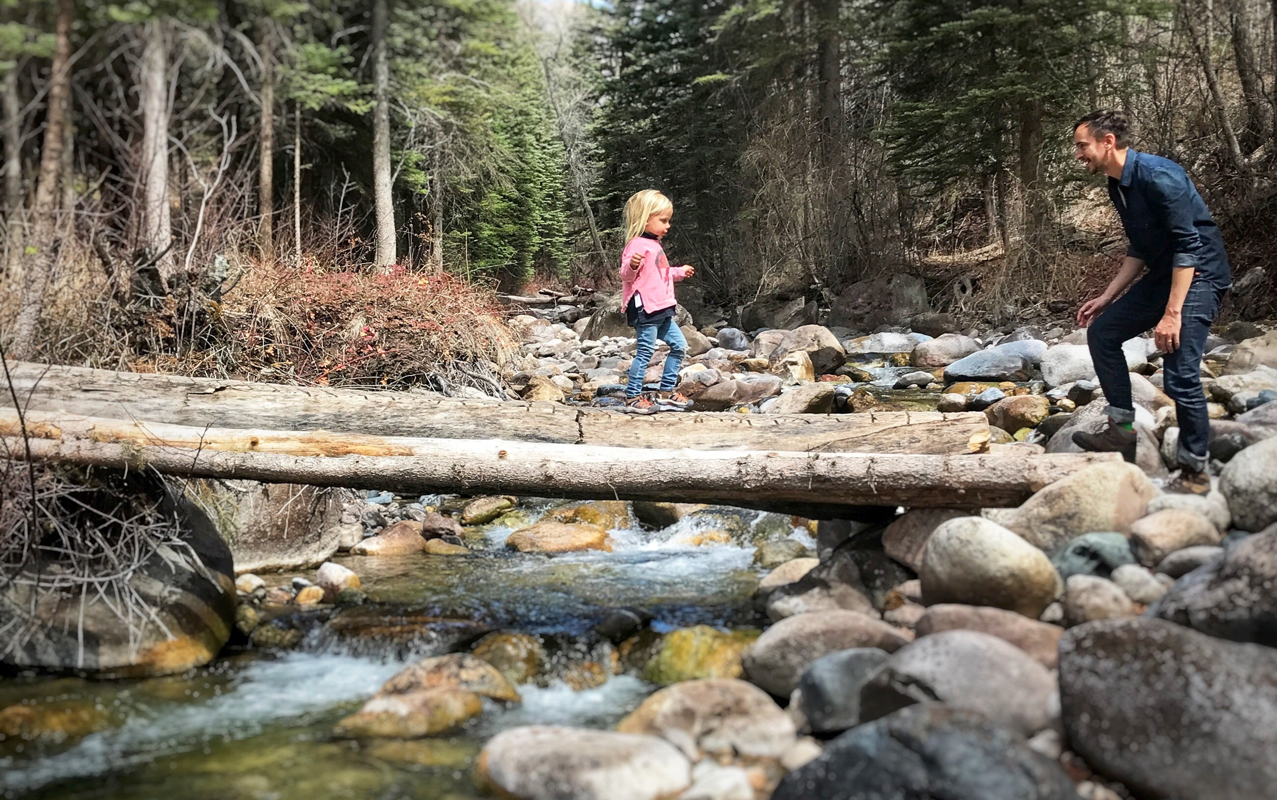 Young girl walks on a log across a stream to her father's waiting arms.